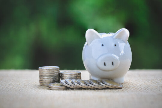 white pig piggy bank and a pile of coins. nature background The concept of saving money. investment and growth.