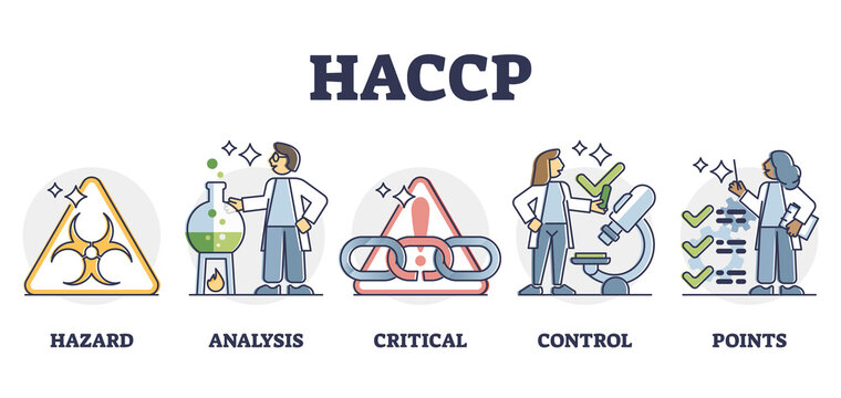 HACCP food safety preventive analysis and control system, outline diagram. Bacteria hazard monitoring and critical hygiene requirement points for safe food production process and preparation.