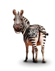 Fototapeta premium Smiling zebra with QR barcode on back