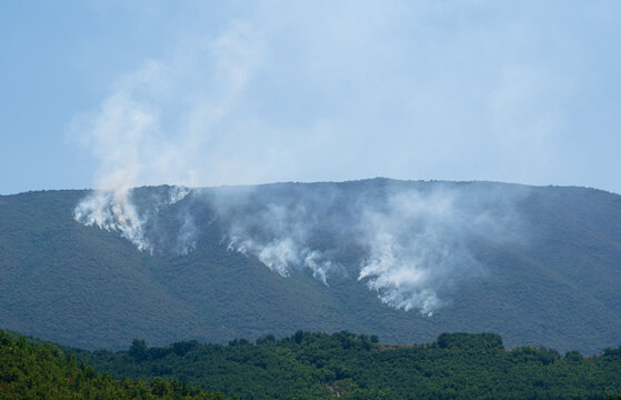 wildfire burning the forest on a mountain