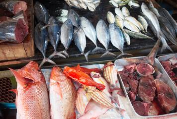 Obraz Fresh fish at a local market in Hikkaduwa, Sri Lanka. - fototapety do salonu