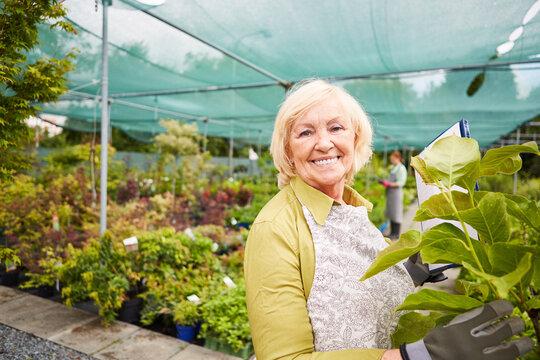 Senior Frau in der Gärtnerei mit Checkliste bei Inventur