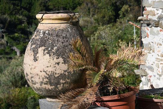 Vecchia giara per l'olio utilizzata per abellire l'ambiente turistico nel borgo di Corniglia, nelle 5 Terre