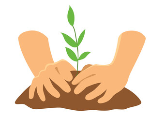 Obraz Hands planting a tree - fototapety do salonu