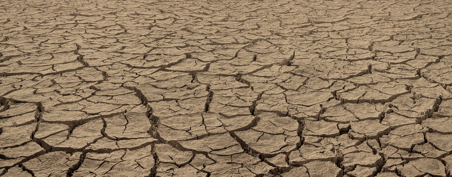 Cracked dried brown soil. Barren land texture, wide panorama with deep focus