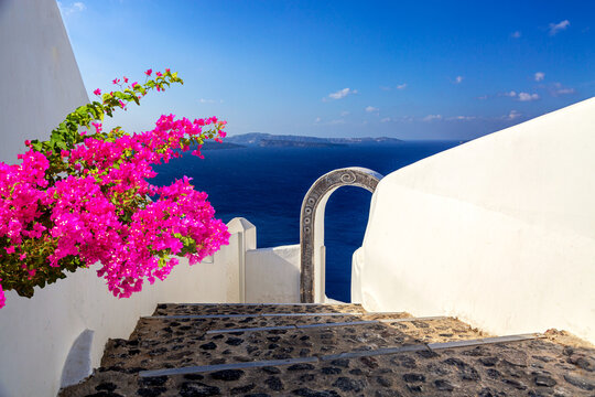 Beautiful arch to the luxury hotel with bougainvillea flower in Oia, Santorini, Greece. Iconic image of vacation in Greece