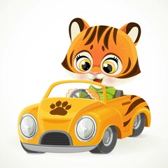 Obraz Cute cartoon baby tiger rides in a orange little toy car for children isolated on white background - fototapety do salonu