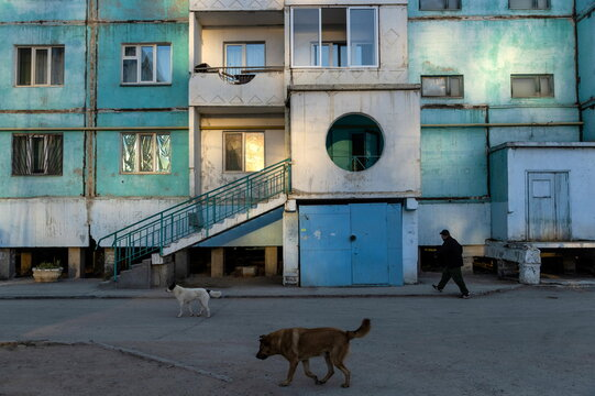 A man and stray dogs pass by a residential block constructed on stilts early morning in Yakutsk