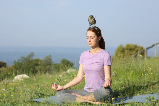 Concentrated woman doing yoga with a owlet on head