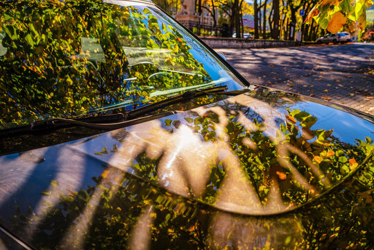 Reflection of colorful autumn leaves on car windshield