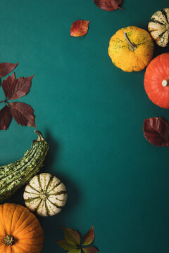 Autumn background with pumpkin collection