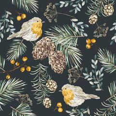 Obraz Christmas seamless pattern, robin birds,  berries, fir twigs, cedar cones, black background. Vector illustration. Nature design. Season greeting. Winter Xmas holidays - fototapety do salonu