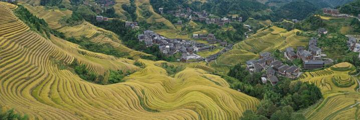 Aerial view of terraces rice fields in Longji