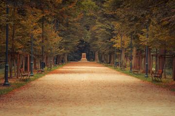 Obraz Aleja w parku jesienią - fototapety do salonu