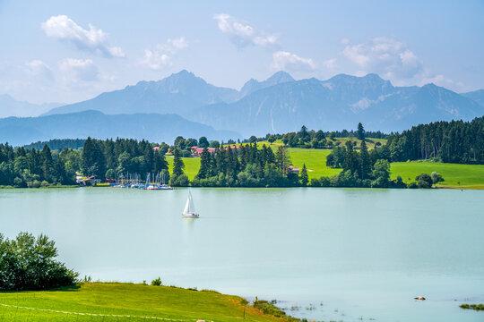Ausblick über den Forggensee und die Allgäuer Alpen, Bayern, Deutschland